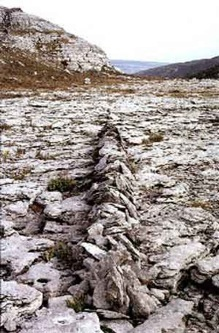 Art: The Work of Richard Long