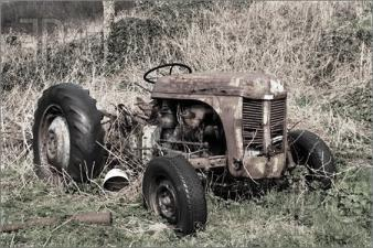 Old-Rusty-Abandoned-Farm-Tractor-295565