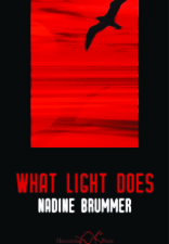 London Grip Poetry Review – McLoughlin & Brummer