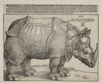Albrecht Durer A rhinoceros-cropped-1500px.jpg