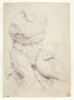 Study of Belvedere Torso_Peter Paul Rubens_copyright_Michel Wuyts Maison Rubens Anvers.JPG