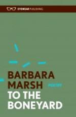 marsh boneyard