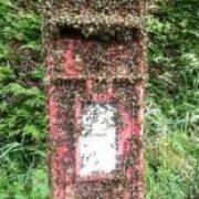 bees post box thumbnail