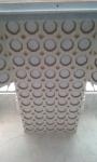 Plaster ceiling, Casino Nobile.jpg
