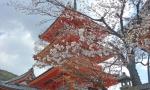 Kiyomizudera pagoda.