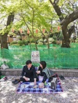picnic under cherry trees (2).