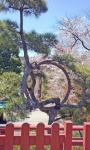 looped tree.