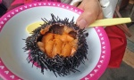 sushi in urchin shell.