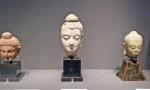 heads of Buddhas.