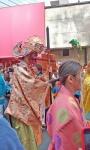 Phallus parade (5).