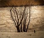 Victoria Crowe, Large Tree Group, 2013. Image Dovecot Studios.