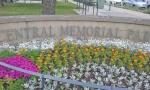 Memorial Park 3.