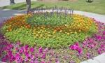 Memorial Park 5.
