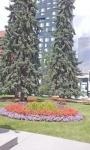 Memorial Park 7.