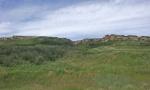 prairie 3.jpg
