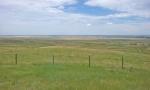 prairie 4.jpg