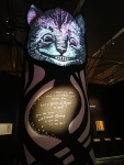 The multifaceted Cheshire Cat.